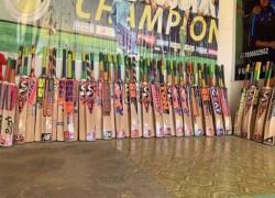 Kashmir willow bats to get GI tagging
