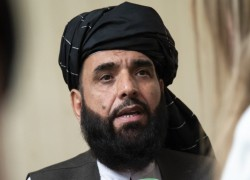 Taliban ask to participate in UNGA, nominate Suhail Shaheen as Afghanistan ambassador